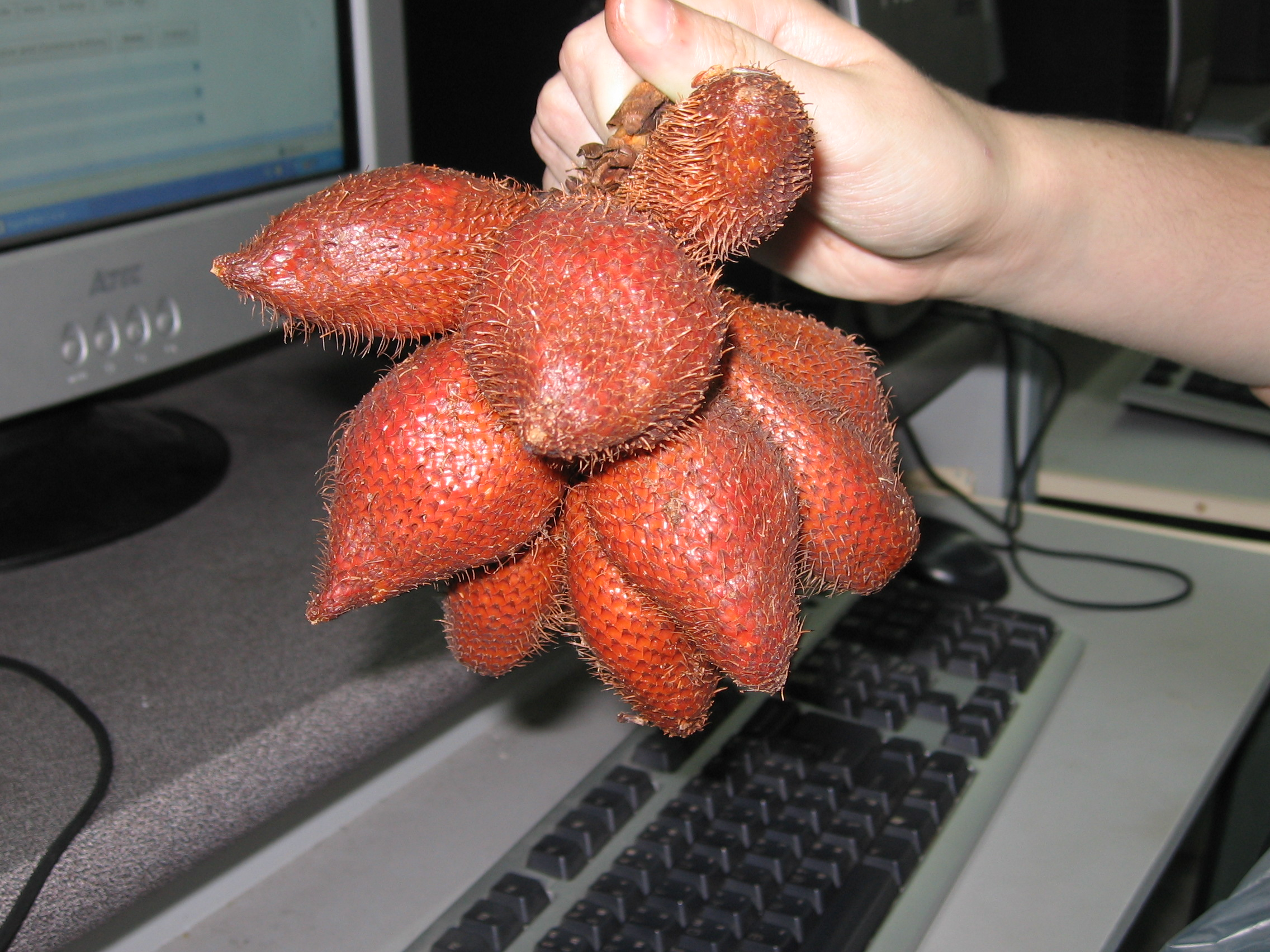 Weird fruit